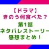 【ドラマ】「きのう何食べた?」1話のネタバレストーリー&感想まとめ!