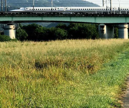 百間川緑地河川敷