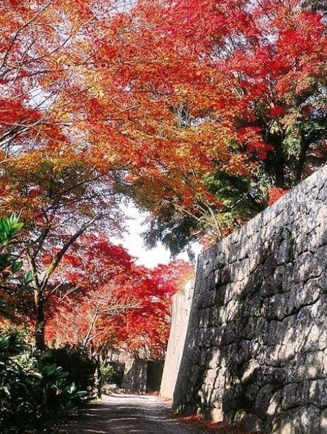 竹田(岡城跡)
