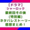 シャーロック最終回その後(特別編)のネタバレとストーリー&感想まとめ!