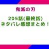 【鬼滅の刃】205話(最終話)ネタバレ感想まとめ!